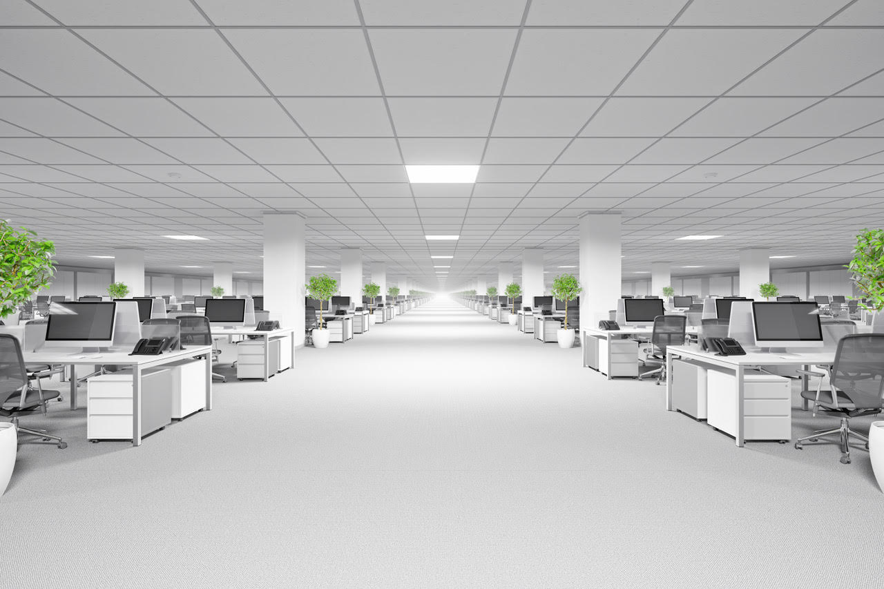 Local specialists for suspended ceilings across Kingston